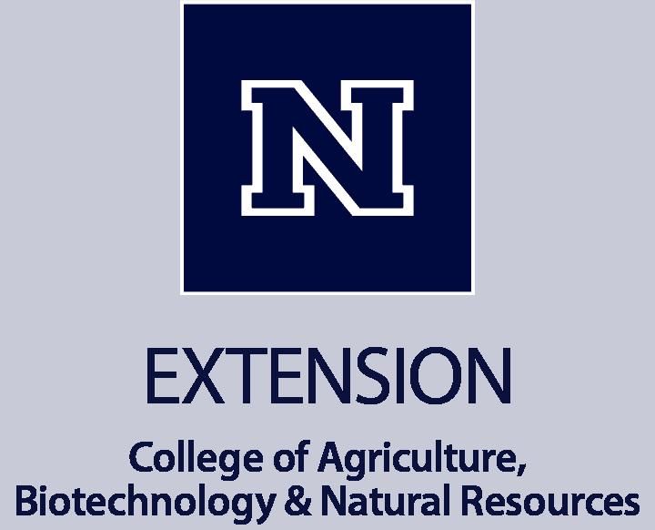 Extension Pos Vert Blue